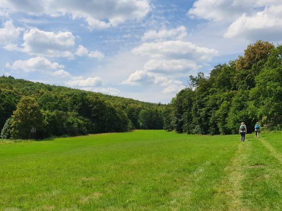 Schöne Wanderstrecke am Waldrand entlang